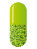 Green capsule with salad Stock Image