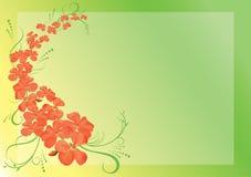 Green Card mit rosafarbenen Blumen - eps10 Lizenzfreie Stockfotos