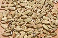 Green cardamom. Image of green cardamom seed pods Royalty Free Stock Photo