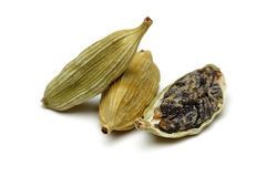 Green cardamom Stock Photos