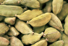 Green cardamom aroma seeds background Royalty Free Stock Photography
