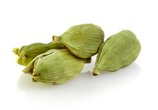 Green cardamom pods Stock Image