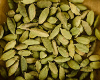 Green cardamom pods Royalty Free Stock Images