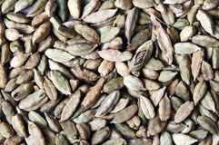 Green cardamom pods (or cardamon) Royalty Free Stock Photography