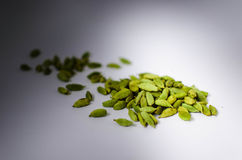 Green cardamom. Scattered green cardamom on white background with light and shadows Stock Image