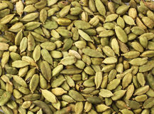 Green cardamom seeds Royalty Free Stock Image