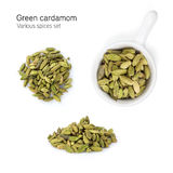 Green cardamom spice Stock Photography