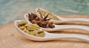 Green cardamom, star anise and fennel seeds in white ceramic spoon. On a cut down a tree Royalty Free Stock Photo