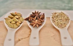 Green cardamom, star anise and fennel seeds in white ceramic spoon. On a cut down a tree Royalty Free Stock Photography
