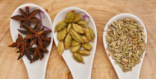 Green cardamom, star anise and fennel seeds in white ceramic spoon Royalty Free Stock Photo