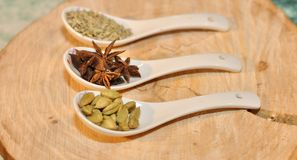 Green cardamom, star anise and fennel seeds in white ceramic spoon Royalty Free Stock Images