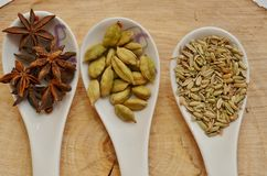 Green cardamom, star anise and fennel seeds in white ceramic spoon Stock Images