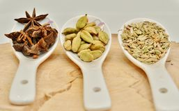 Green cardamom, star anise and fennel seeds in white ceramic spoon. On a cut down a tree Royalty Free Stock Image