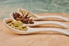 Green cardamom, star anise and fennel seeds in white ceramic spoon. On a cut down a tree Royalty Free Stock Images