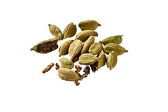 Green cardamom Royalty Free Stock Images