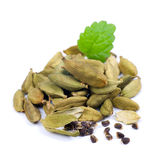 Green cardamom Royalty Free Stock Image