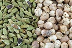 Green Cardamon and Round Siamese Cardamom Stock Photography