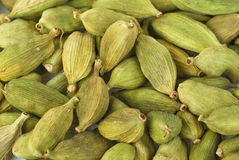 Green cardamon seeds Royalty Free Stock Images