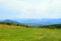 Green Carpathian Mountains in Ukraine Stock Photo