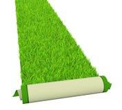 Green carpet Stock Photos