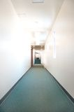 Green carpet. The green carpet leading into a clean hallway Royalty Free Stock Images