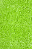 green carpet Stock Image