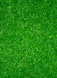 Green carpet Royalty Free Stock Photos