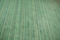 Green carpet Stock Photography