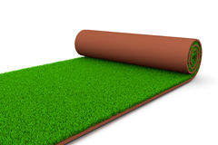 Green Carpet Royalty Free Stock Photos