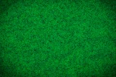Green carpet or Green woolen fabric texture background. royalty free stock photo