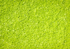 Green carpet texture Royalty Free Stock Photos