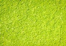 Green carpet texture Royalty Free Stock Photos