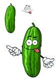 Green cartoon cucumber vegetable Stock Photography