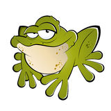 Green cartoon frog Stock Images