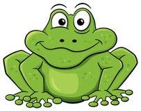 Green cartoon frog  on white Royalty Free Stock Image