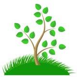 Green Cartoon Tree Royalty Free Stock Photos