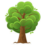 Cartoon tree, green oak tree with luxuriant foliage.  Stock Photography