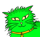 Green cat. Creative design of rare green cat Royalty Free Stock Images