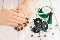 Green cat eye manicure Royalty Free Stock Photo