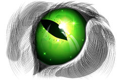 Green cat eye. Vector illustration of green cat eye against a white coat Royalty Free Stock Images