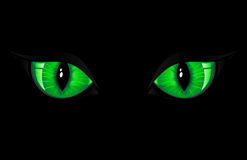 Green Cat Eyes Stock Image