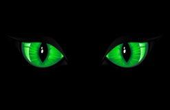 Green Cat Eyes. Two green cat eyes on black background, illustration Stock Image