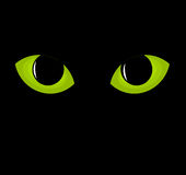Green cat eyes Stock Photo