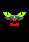 Green cat eyes and a red bow tie. Muzzle your pet on a black bac. Kground Stock Image