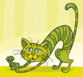 Green Cat stretching. Illustration of Green Cat stretching Royalty Free Stock Photography