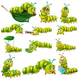 Green caterpillar character in different actions Stock Images