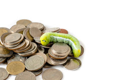 Green caterpillar climbing on Thai coins Stock Photography