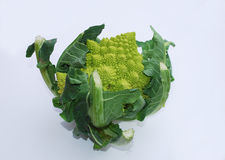 Green Cauliflower Stock Photos