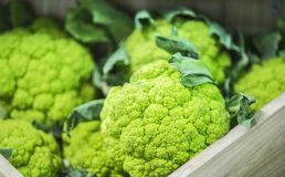 Green cauliflower in market, close up.  Royalty Free Stock Photo