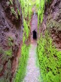 Green cavern walls. Green verdant landscape in the highlands of Ethiopia Royalty Free Stock Image